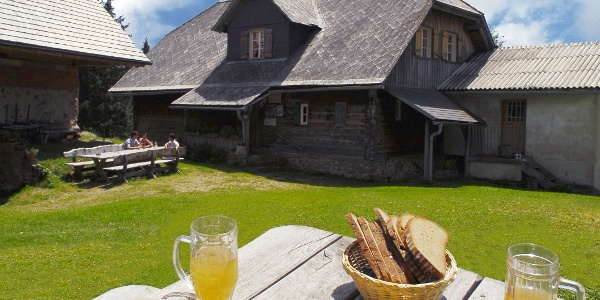 Saualpe- Gasthaus Alpenrose
