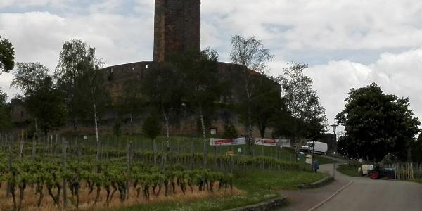 Burg auf dem Steinsberg bei Weiler/Sinsheim