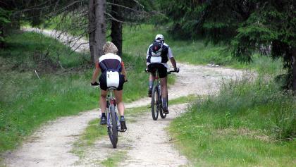 Mountainbiken in Langenwang