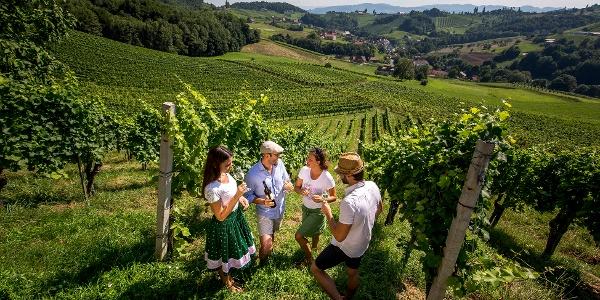 Weingenuss mitten im Weingarten in Ratsch an der Weinstraße