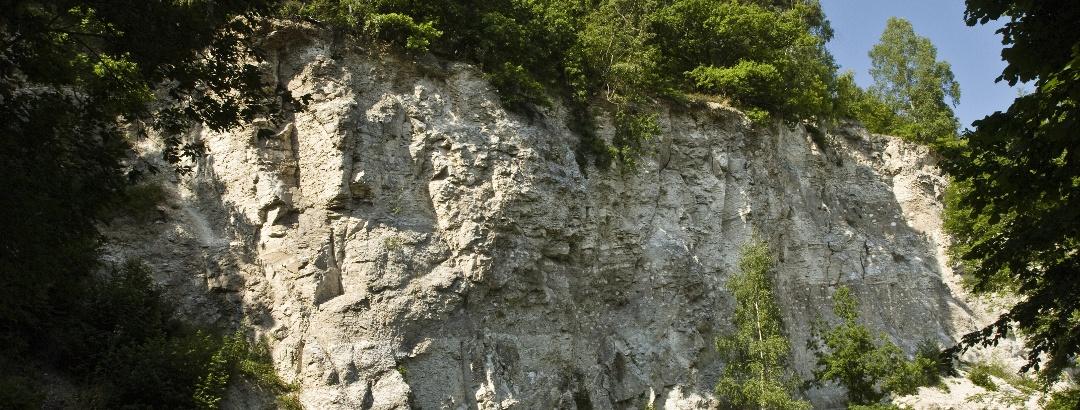 Gipskarst im Südharz