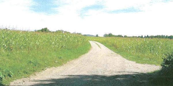 Auf dem Aarbergfeldweg