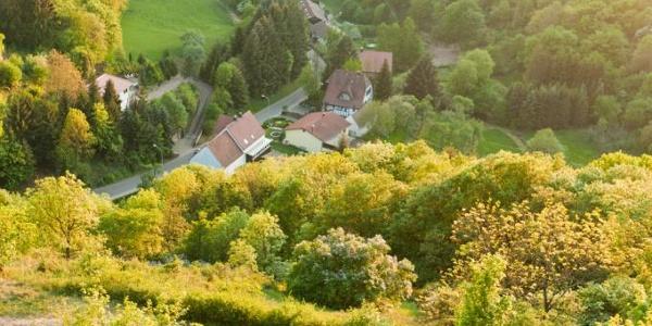 Blick von Burg Falkenstein