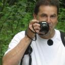 Profilbild von Walter Bühler
