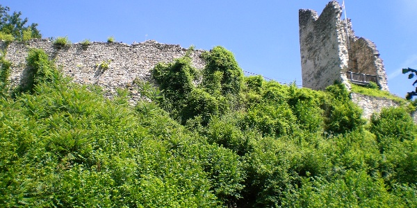 Ruine Leonstein