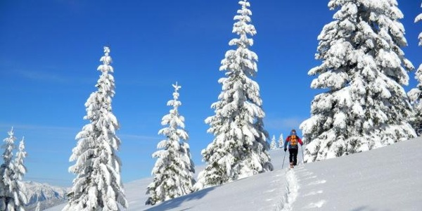 Schneehschuwanderung rund um Fischbach