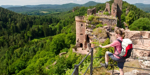 Burgengruppe Alt-Dahn