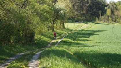 Hangweg zwischen Mittelstreu und Unsleben