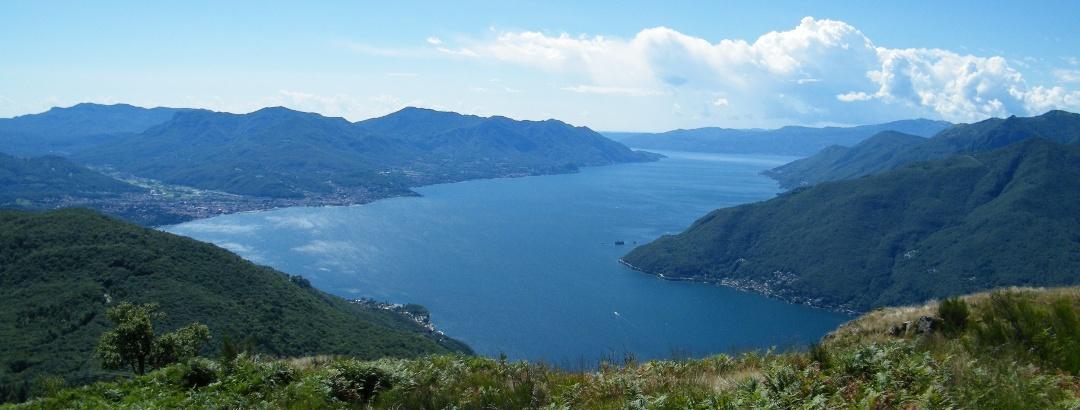 Von der Gipfelwiese des Monte Borgna genießen wir einen herrlichen Ausblick über den Lago Maggiore nach Süden.