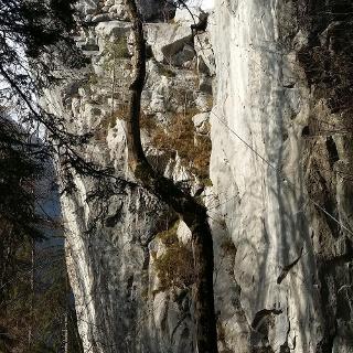 Kletterwand Lorünser Wändle