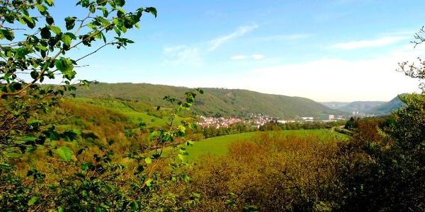 Blick auf Bärenbach