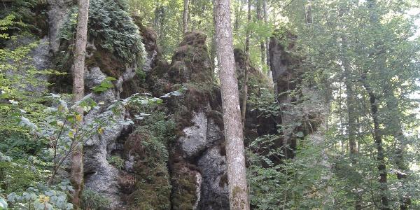 Karstgesteinsaufschlüsse im Wasserburger Tal