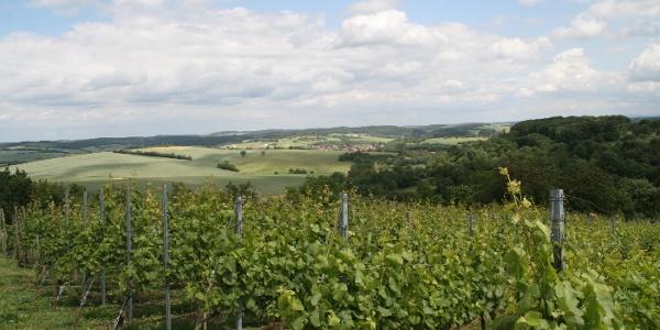 Blick vom Steinsberg, Sinsheim - Weiler