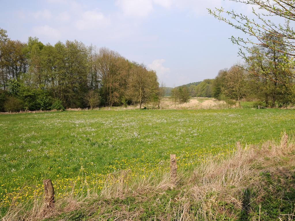 Sachsenweg