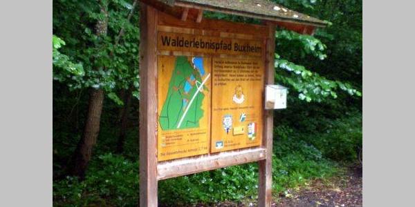 Walderlebnis und innere Einkehr Buxheim (Aktiv Park Kneippland Unterallgäu)