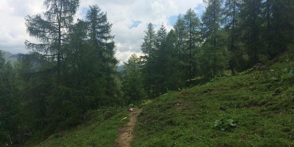 Hirschwandsteig