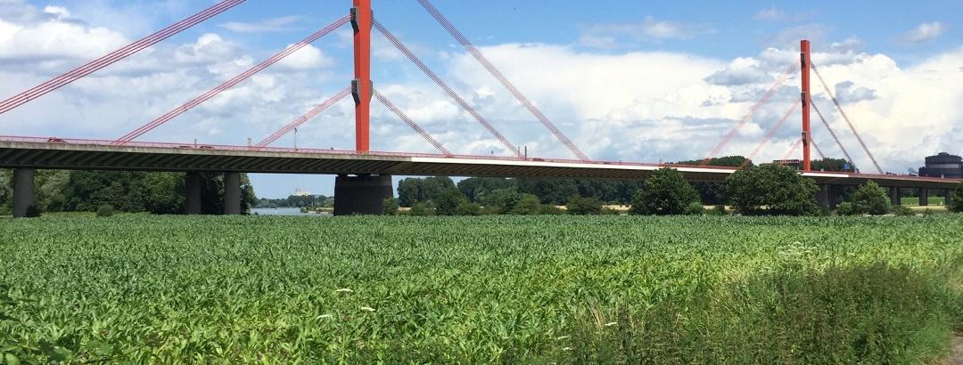 Rheinbrücke Duisburg-Baerl