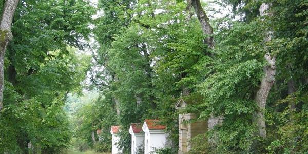 Kreuzweg auf den Kalvarienberg in Kelheim