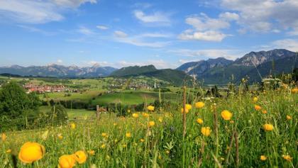 Ausblick vom Bergwiesenpfad auf Pfronten