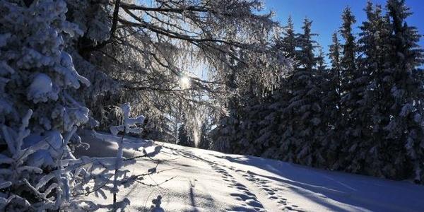 Winterimpressionen in der Region Joglland-Waldheimat