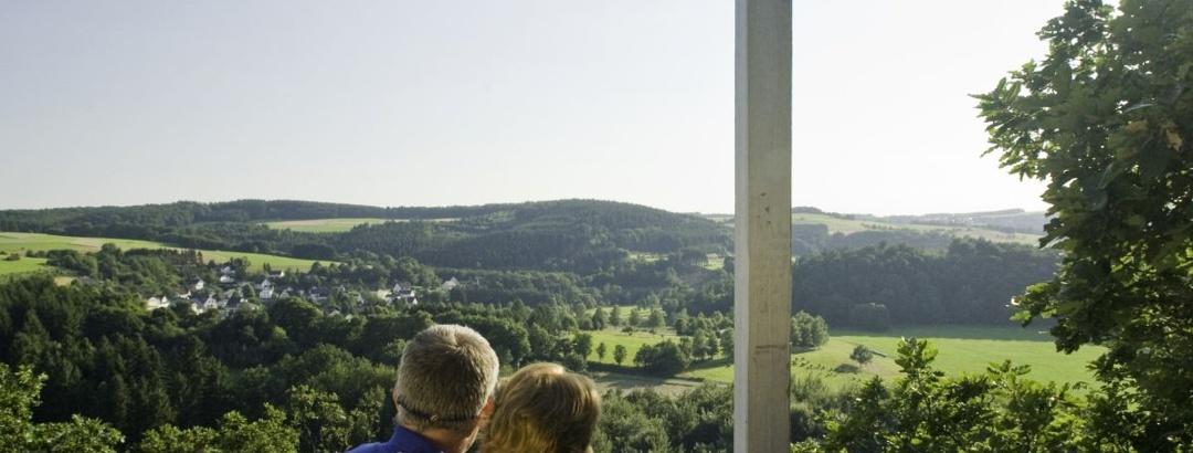 Ausblick über das Tal der Nister von der Hohen Ley.
