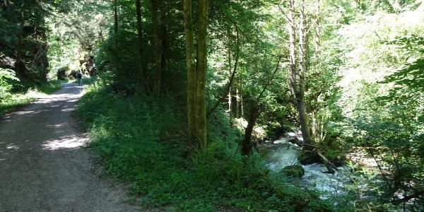 Wanderweg im Murgtal