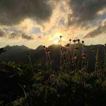 Sonnenuntergang auf der rappenseehütte