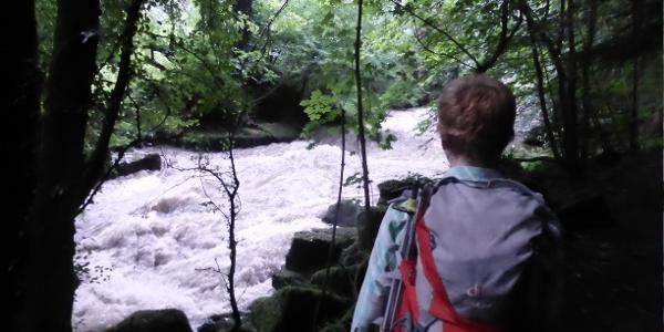 Hochwasser an der Würm.