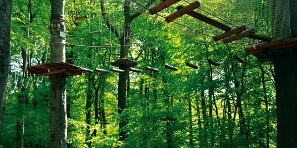 Kletterwald an der Lauschhütte