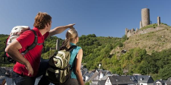 Blick auf Löwenburg