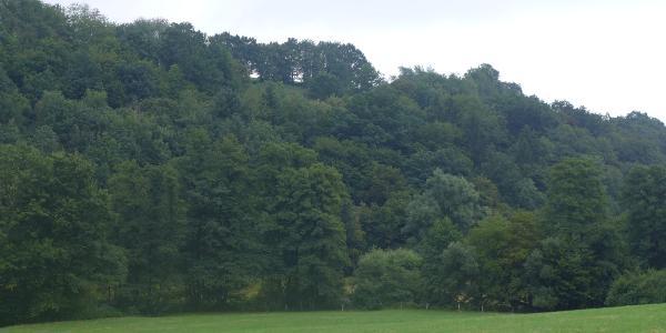 Das Naafbachtal bei Kreuznaaf