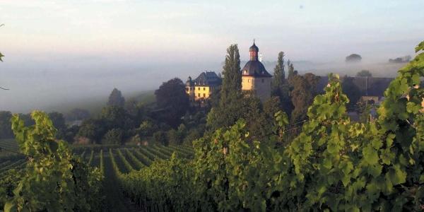 Schloss Vollrads, Rheingau