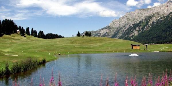Little lake near the golf course in Campo Carlo Magno