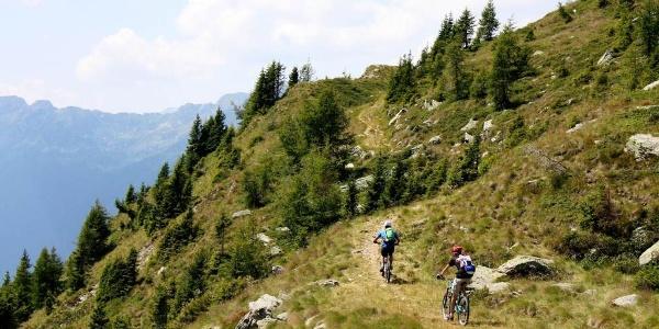 Valsorda XC trail