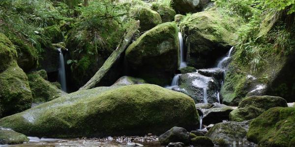 Noch mehr Wasserfälle :-)