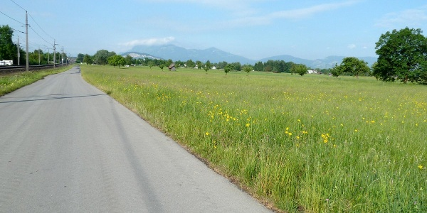 Der Radweg entlang der Bahnschienen