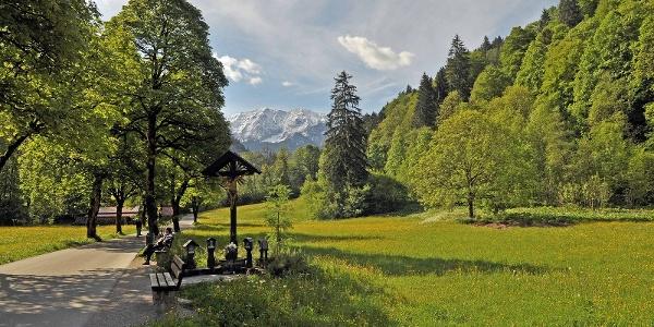 Dem Forstweg zur Klammeingangshütte folgen