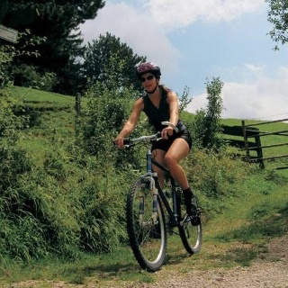Biken in Puchberg