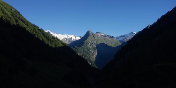 Blick durchs Lasnitzental auf die Gletscherberge der Venedigergruppe.