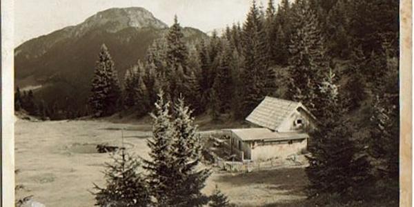 Alpenrose Schutzhaus mit Hundseck und Tonion (1699 müA) im Hintergrund
