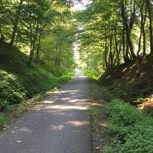 Bahntrassenradweg / Bergischer Panoramaradweg