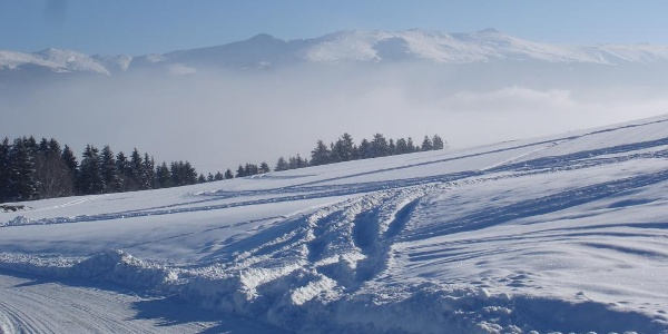 Rodelbahn Tonnerhütte