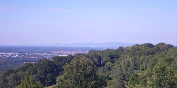 Sicht vom Michaelsberg in die Rheinebene Richtung Heidelberg