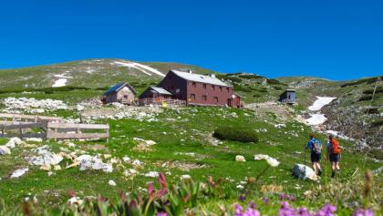 """Graf-Meran-Schutzhaus unterhalb des Gipfels """"Hohe Veitsch"""""""