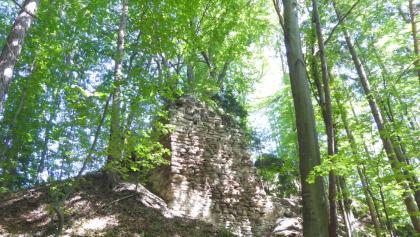 Die ältesten Teile der Ahnherrnruine stammen aus dem 13. Jahrhundert.