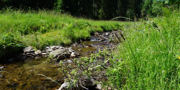 Fluss entlang der Brunnenroute