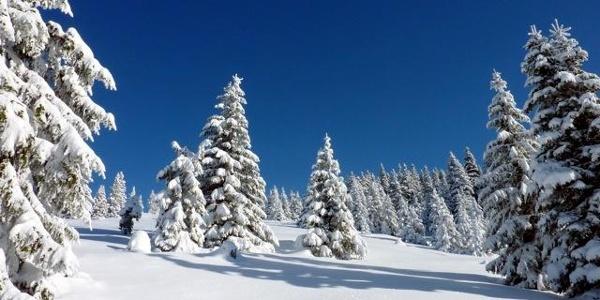 Winterlandschaft Joglland-Waldheimat