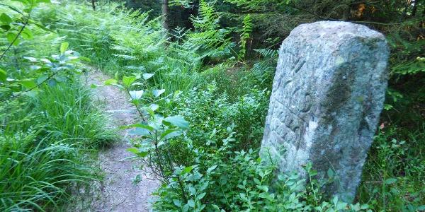 Grenzstein zwischen Spindelhau und Auerhahnköpfle