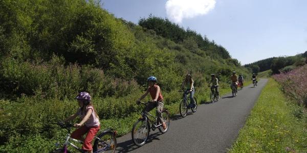 Nims-Radweg_Radfahrer in der Eifel