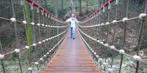 Hängebrücke im Binger Wald